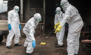 В граничащей с Россией западной Монголии зафиксирована вспышка бубонной чумы