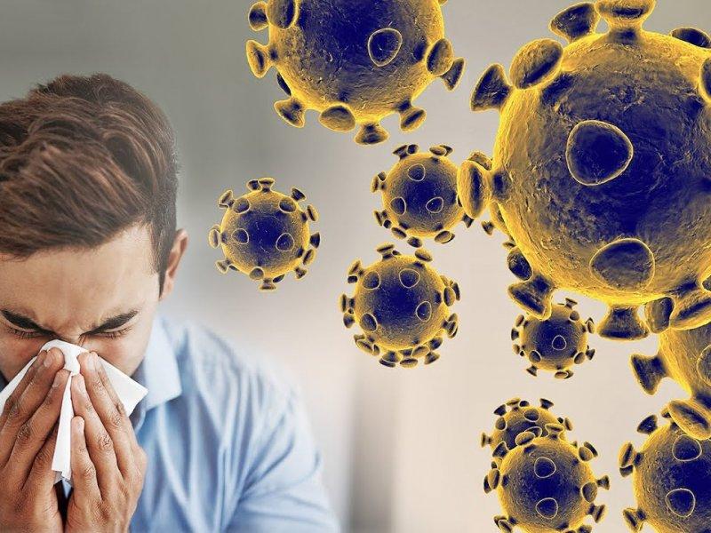 Есть ли иммунитет к коронавирусу у переболевших