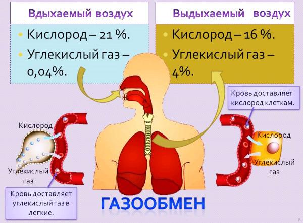 Норма кислорода в крови у взрослых при коронавирусе