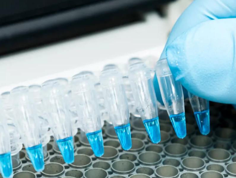 Где сделать тест на коронавирус в Краснодаре бесплатно и платно