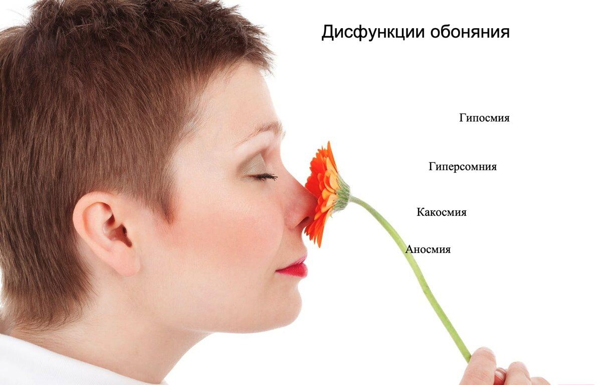 Потеря обоняния: причины, механизмы, как аносмия влияет на образ жизни, здоровье